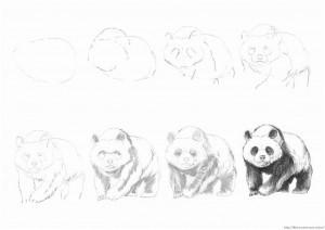 Как рисовать панду