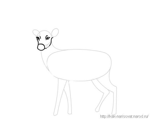Как научиться рисовать оленя