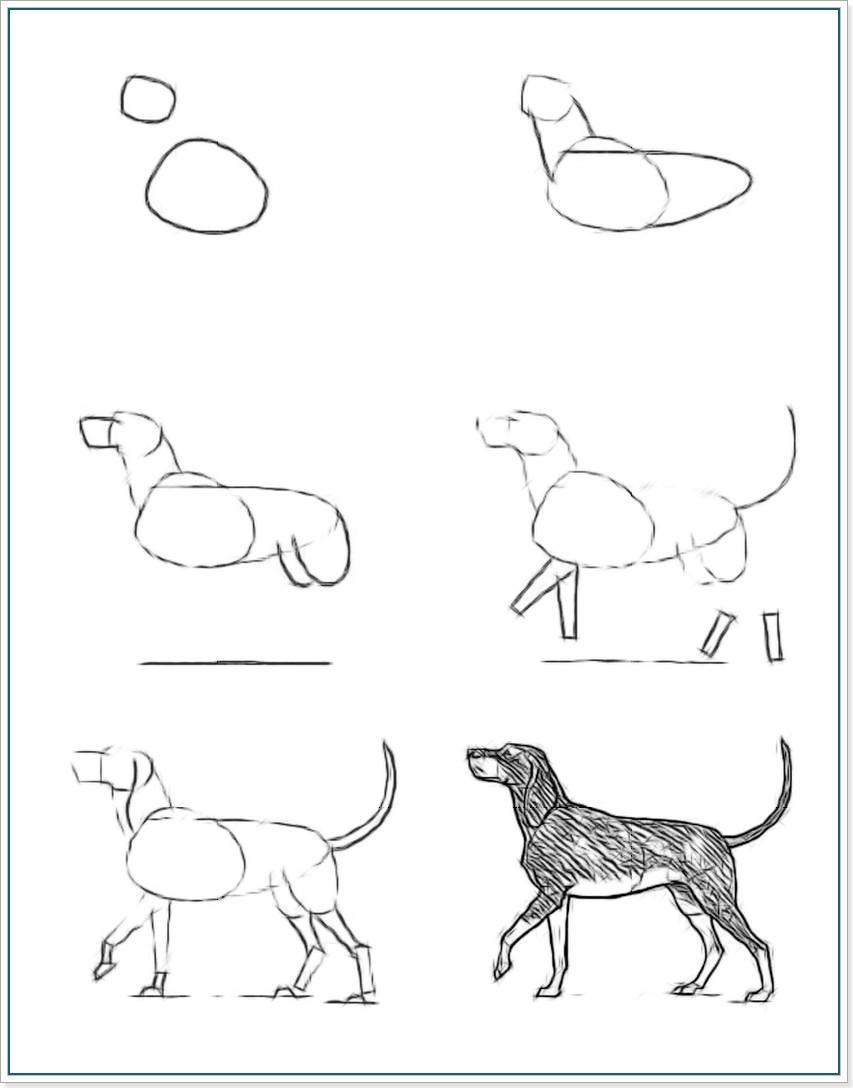 как нарисовать собаку поэтапная инструкция