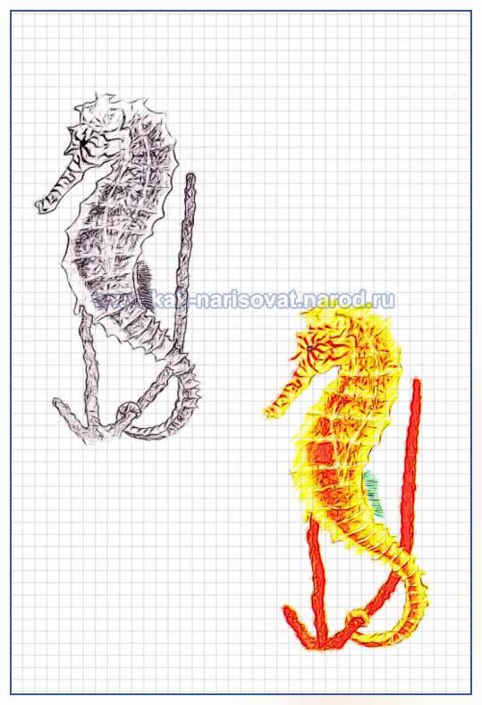 Рисуем морского конька - поэтапный пример в картинках