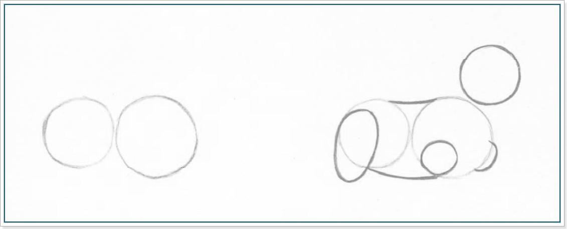 Как рисовать собаку йоркширского терьера карандашом