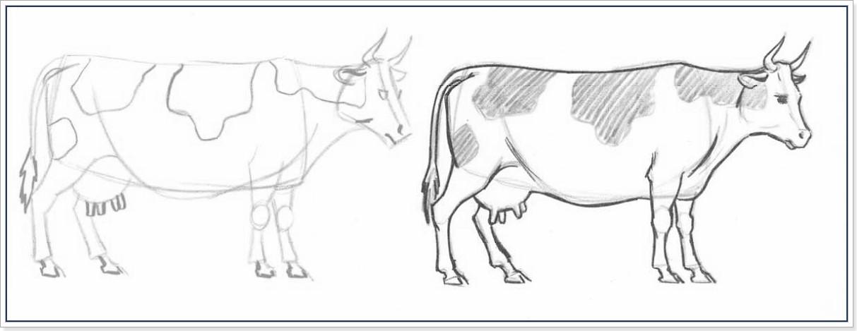 Рисовать корову