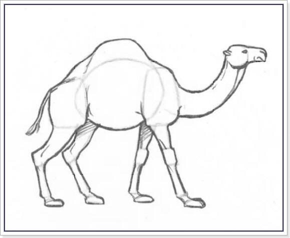 Нарисованный верблюд