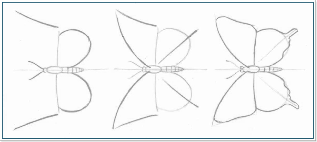 рисуем бабочек. Этап 3