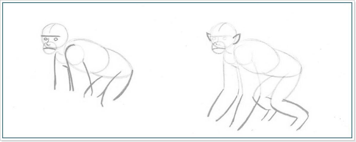 Как рисовать обезьяну поэтапно