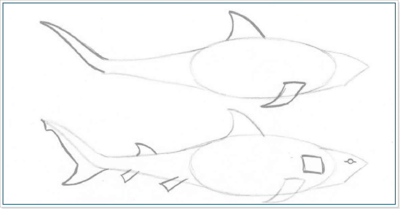 Как нарисовать акулу - этап 2
