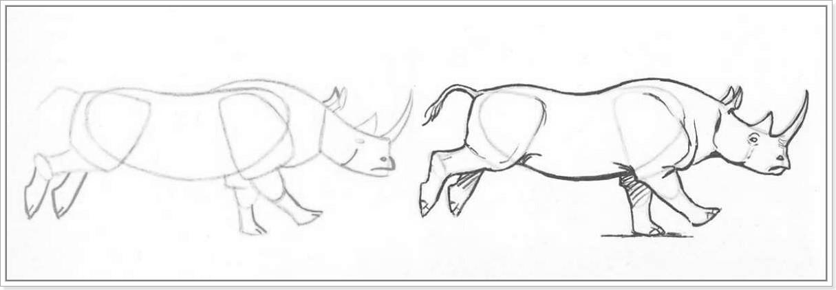 как нарисовать носорога пошагово