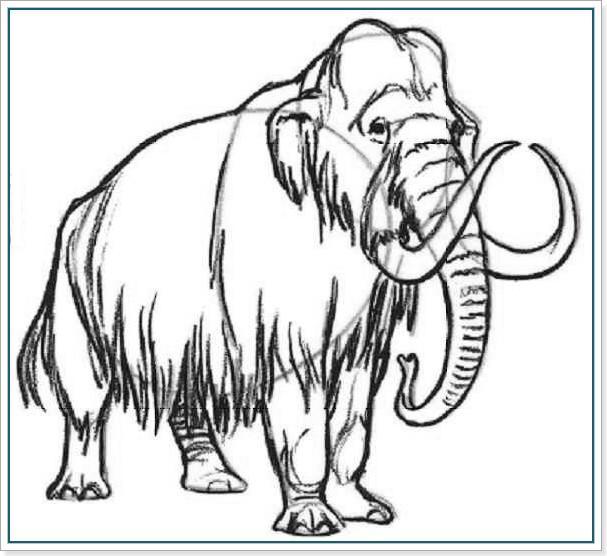 как рисовать мамонта