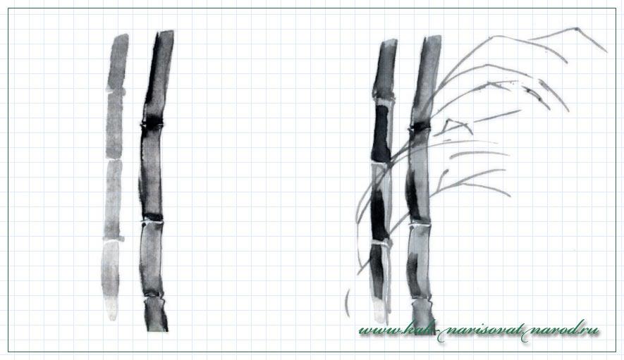 рисуем восточную картинку с бамбуком