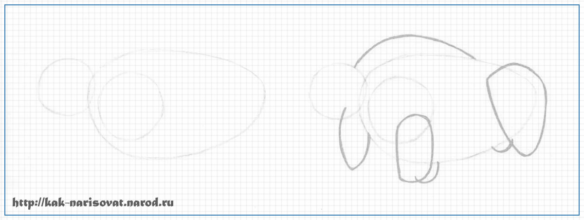 Как нарисовать карандашом быка, зубра или бизона
