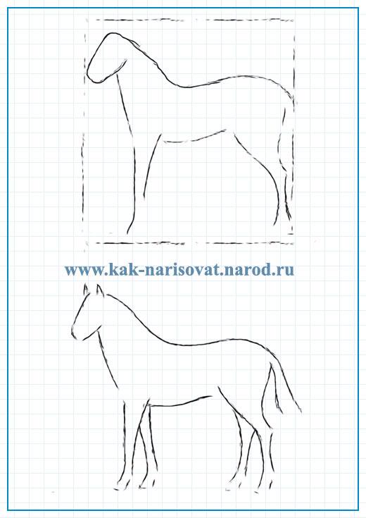 поэтапное рисование жеребенка