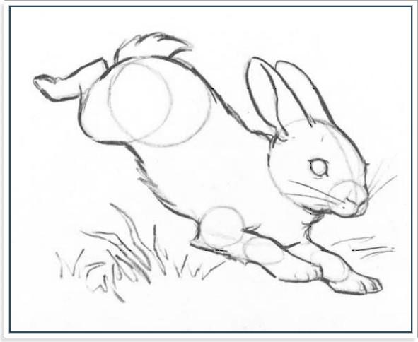 Как рисовать кролика