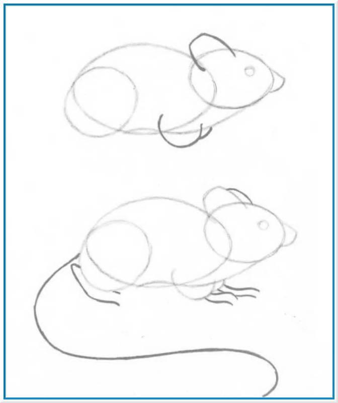 Учимся рисовать мышь карандашом