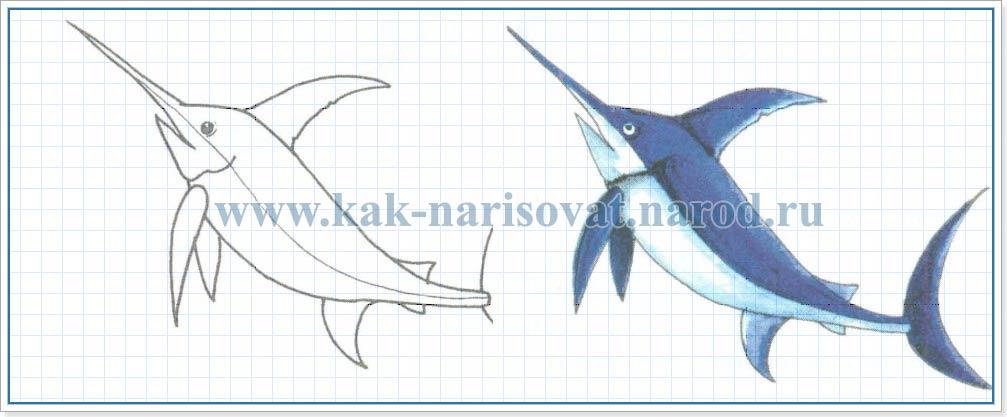 Как нарисовать карандашом меч рыбу