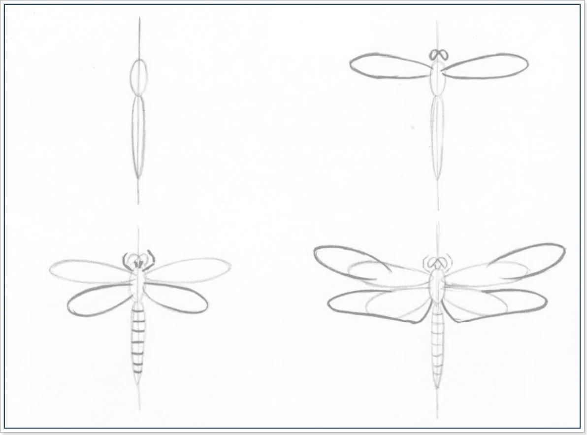 рисунки карандашом цветы поэтапно: